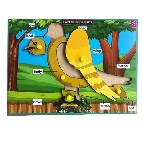 Extrokids Wooden Birds Parts Learning Puzzle - 12*9 inch - EKW0009