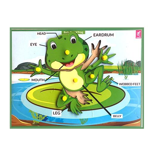 Extrokids Wooden Frog Parts Learning Puzzle Peg Board - 12*9 inch - EKW0011